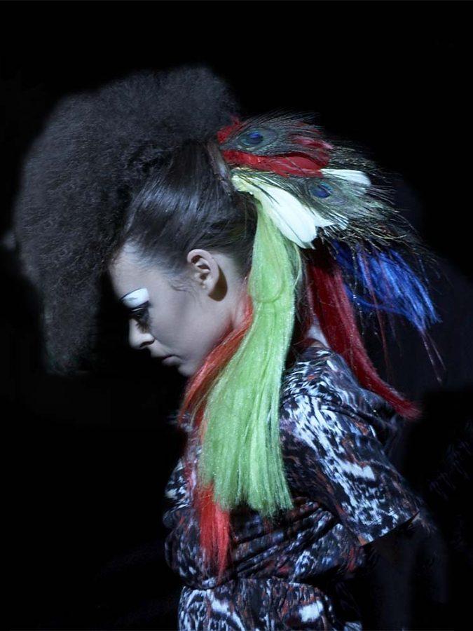 Bird of Paradise Hair
